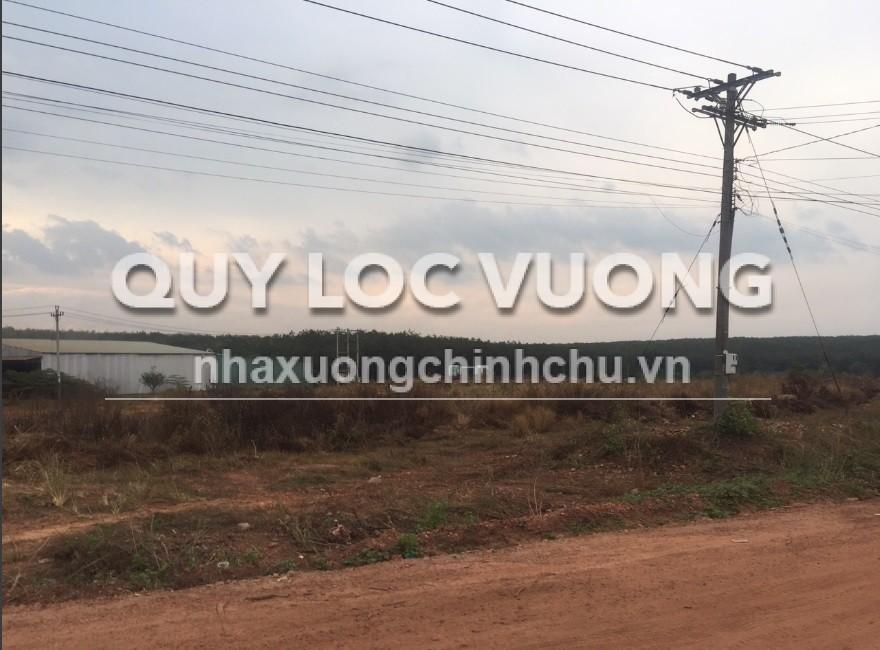 Bán đất xây xưởng xã Phước Hòa huyện Phú Giáo Bình Dương diện tích 50.000m2