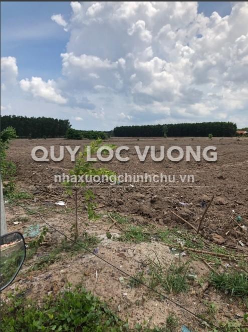 Cho thuê đất xây xưởng huyện Long Thành tỉnh Đồng Nai diện tích 60.000m2