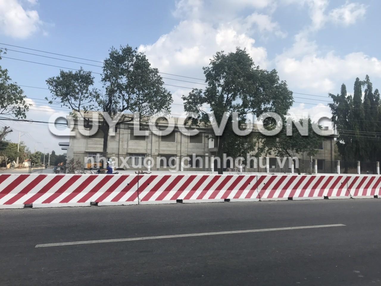Cho thuê nhà xưởng tại huyện Dầu Tiếng tỉnh Bình Dương, diện tích 40.000m2