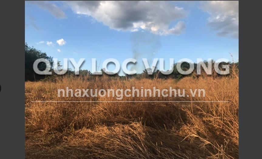 Bán 10.719m2 đất trống tại khu vực Tân Hiệp, Tân Uyên, Bình Dương
