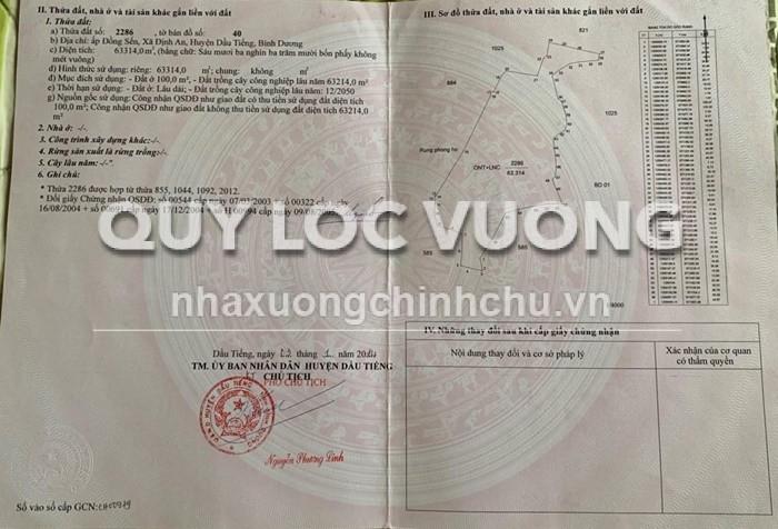 Bán 65.000m2 đất CLN tại xã Định An huyện Dầu Tiếng, Bình Dương