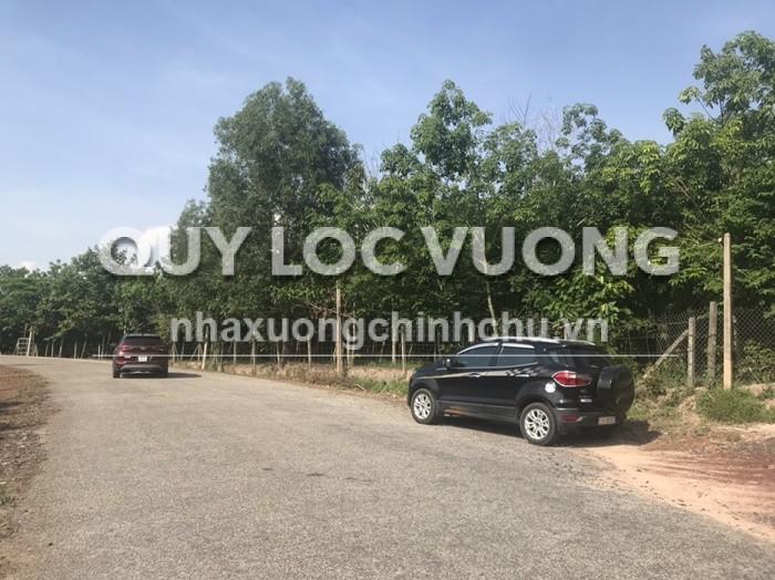 Bán 83.000m2 đất xã Thanh Tuyền huyện Dầu Tiếng, Bình Dương