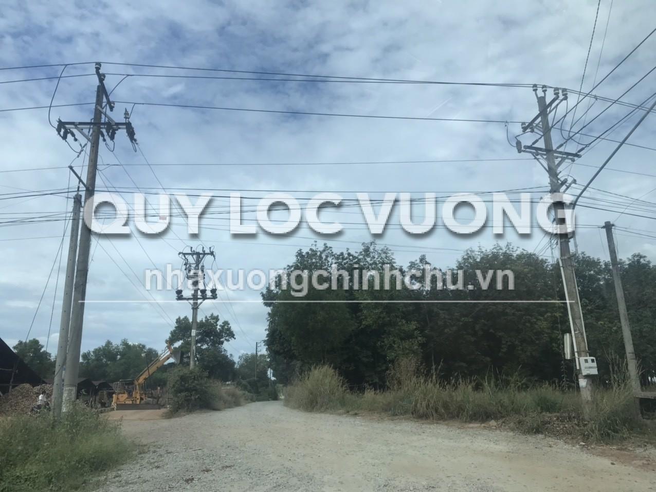 Bán đất và xưởng sản xuất gỗ xã Tân Hiệp huyện Phú giáo rộng 320.000m2