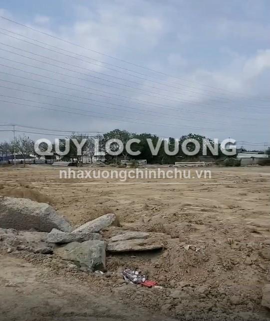 Cho thuê đất trống phường Tân Phước thị xã Phú Mỹ Bà Rịa Vũng Tàu