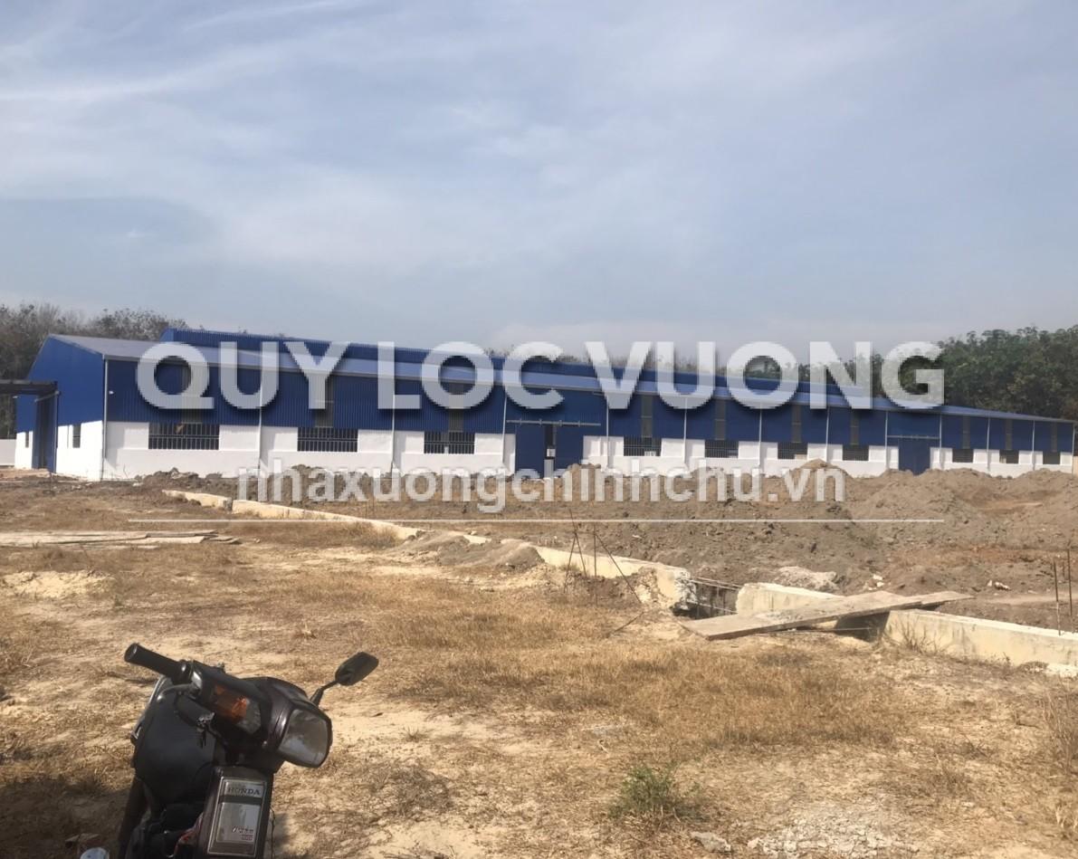 Bán xưởng xây mới 27.000m2 gần điện lực Phú Giáo xã Vĩnh Hòa Bình Dương