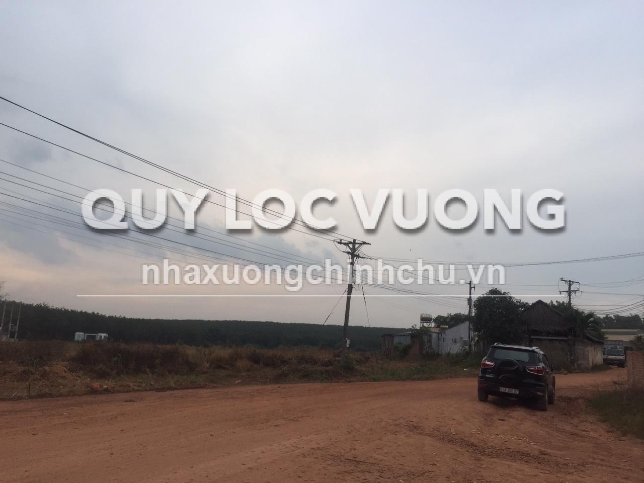 Bán đất trống xây xưởng 52.000m2 ở xã Phước Hòa Phú Giáo Bình Dương